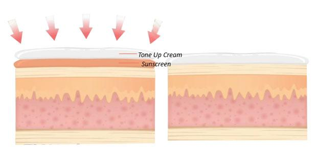 sun_tone_cream_cell.jpg